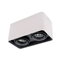 DL-044 SQUARE DOUBLE DOWNLIGHT SURFACE MOUNTED BLACK/WHITE